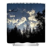 Looking To The Sky Shower Curtain