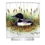 Loon And Baby Judy Filarecki Watercolor Shower Curtain