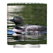 Loon In Summer Shower Curtain