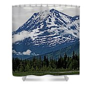 Looned View Shower Curtain