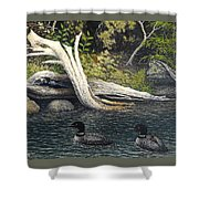 Loons On Saranac Lake Shower Curtain