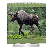 Loose Moose Shower Curtain
