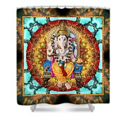 Lord Generosity Shower Curtain