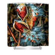 Lord Of The Dance 2 Shower Curtain