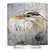 Lord Of The Marsh Shower Curtain