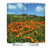 Los Olivos Poppies Shower Curtain