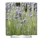 Lost In Nature Shower Curtain