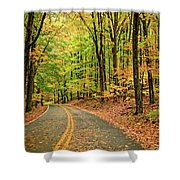 Lost In Pennsylvania Shower Curtain