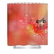 Lost In Red Shower Curtain