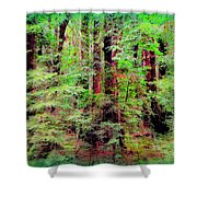 Lost In The Forest Shower Curtain