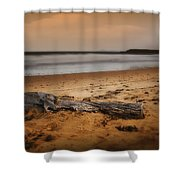 Lost Log 002 Shower Curtain