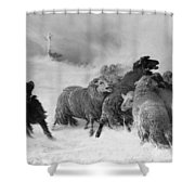 Lost, Souvenir Of Auvergne, August Friedrich Albrecht Schenck Shower Curtain