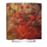 Lost Vintage Crabapples 5942 Ldp_2 Shower Curtain
