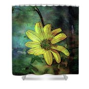 Lost Wild Flower In The Shadows 5771 Ldp_2 Shower Curtain