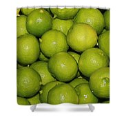 Lots Of Limes Shower Curtain