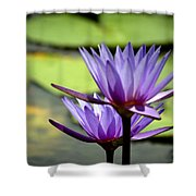 Lotus 5 Shower Curtain