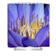 Lotus 9 Shower Curtain