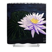 Lotus Blossom At Night Shower Curtain