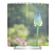 Lotus Bud In Garden Shower Curtain