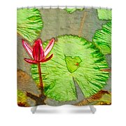 Lotus Flower Bloom In Pink 1 Shower Curtain