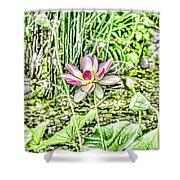 Lotus Flower Bloom In Pink 2 Shower Curtain