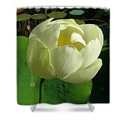 Lotus Flower Shower Curtain