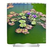 Lotus Flowers #4 Shower Curtain