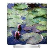 Lotus Lake Shower Curtain