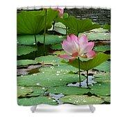 Lotus Pond #3 Shower Curtain