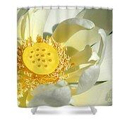 Lotus Up Close Shower Curtain
