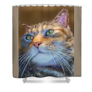 Louanne Shower Curtain