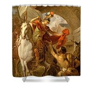 Louis Galloche - A Scene From The Life Of St. Martin Shower Curtain