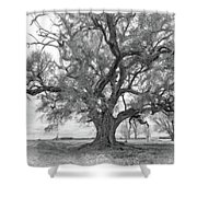 Louisiana Dreamin' Monochrome Shower Curtain