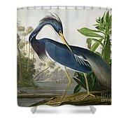 Louisiana Heron Shower Curtain by John James Audubon
