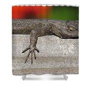 Lounge Lizard Shower Curtain