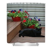 Lounging Black Cat Shower Curtain