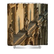 Louvre Exterior Shower Curtain