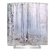 Love Amidst The Aspens Shower Curtain by Kevyn Bashore