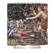 Love And The Maiden Shower Curtain