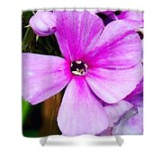 Love Any Pink Flower  Shower Curtain