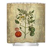 Love Apple Botanical  Shower Curtain