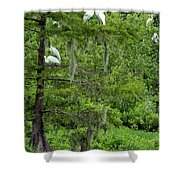 Love Birds And Friends Shower Curtain