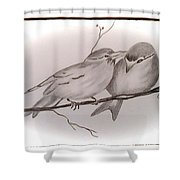 Love Birds Shower Curtain by Ginny Youngblood