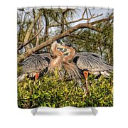 Love Birds - Great Blue Heron Shower Curtain