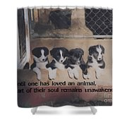 Love For Animals Shower Curtain by Smilin Eyes  Treasures