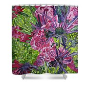 Love For Roses Shower Curtain