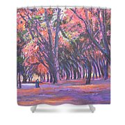 Love In Lal Bagh 1 Shower Curtain