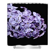 Love In Lilac Shower Curtain