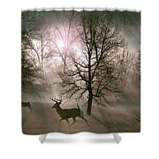 Love In The Wild Shower Curtain