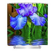 Love Is Blue 2 Shower Curtain